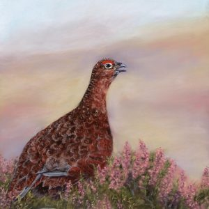 Cocking Grouse 2