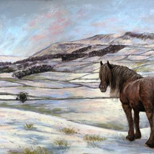 Dales Winter