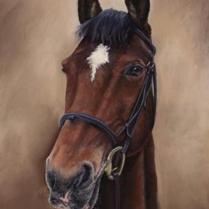 pastel art drawing of a horse